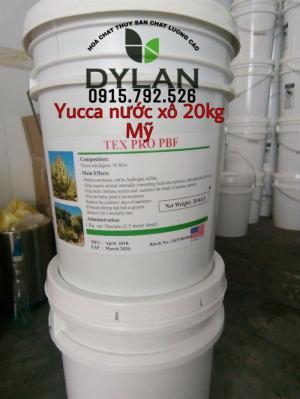 Yucca Mỹ dạng nước