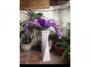 Bình hoa lan tím trắng pha lê gần như mới nguyên, cao 72cm
