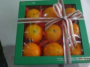 Hộp quà trái cây - FSNK14