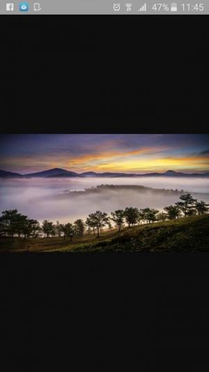 Camping Đà Lạt