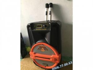 Loa Bluetooth Karaoke di động CXF ( tặng 2 micro ko dây )`