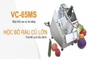 máy cắt sợi củ quả, máy cắt sợi khoai môn, máy cắt cắt lát dưa leo,, máy cắt củ quả làm đồ chua VC60MS