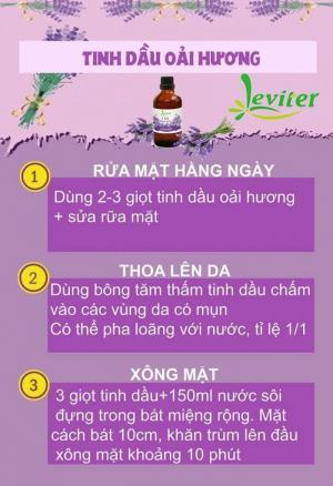 Tinh dầu Lavender 100ml