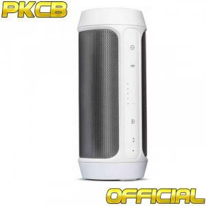 Loa Bluetooth Bass âm Thanh Sống Động chuẩn HIFI PKCB-2+ - Loa