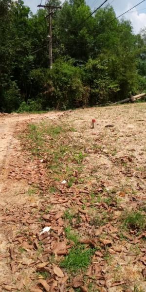 Đất Thổ Cư 100%(5m X 26m) Xã Tân An Hội,Củ Chi