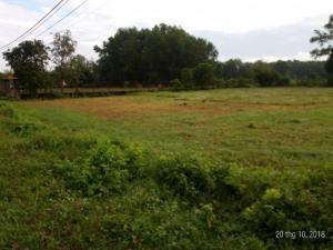 2018-10-20 14:02:20 Đất 2 mặt tiền 32m x 28m đường nhựa ấp Bình Thượng, thuộc xã Thái Mỹ huyện Củ Chi 2,200,000,000