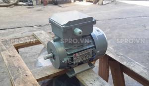 Mô tơ điện 1 pha Enertech nhập khẩu từ Australia