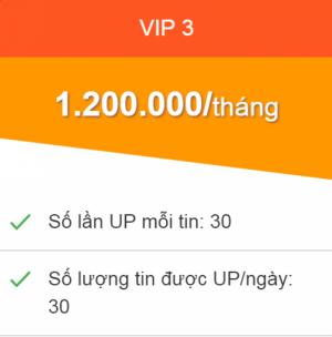 Dịch vụ Đẩy tin bán hàng online 30 tin/ ngày, 1 tin 30 lần Gói VIP 3  phí  1 triệu 2/tháng