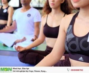Gói trải nghiệm lớp Yoga, Fitness, Bụng...