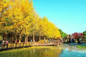 Tour SeOul - Jeju - Nami - Everland