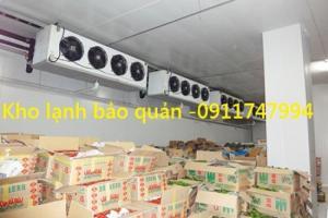 Giá lắp đặt kho lạnh bảo quản 5hp