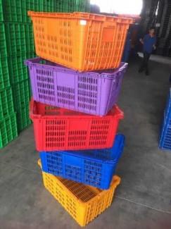 Sóng nhựa hở đựng thanh long vùng Bình Thuận Model VN05-HL giá rẻ