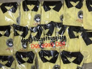 Xưởng may áo thun cá sấu, áo thun cá mập, áo thun cotton uy tín