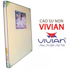 Nệm cao su non Vivian thông hơi độ mềm vừa phải Bảo hành 20 năm
