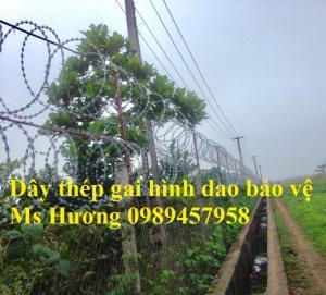 Dây kẽm lam, dây thép gai vòng tròn rào vườn, dây thép gai bảo vệ nhà giá rẻ mới 100%