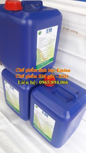 Chế phẩm sinh học Emina sử dụng trong chăn nuôi - Đại học Nông nghiệp 1 Hà Nội