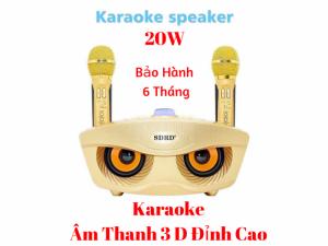 Loa Karaoke SD-306 Âm Thanh 3D Cực Hay Kèm 2 Mic