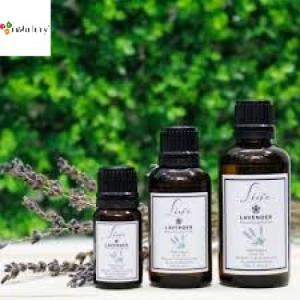 Tinh dầu oải hương (Lavender) 10ml