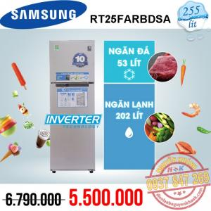 Tủ lạnh Samsung Inverter RT25FARBDSA 255 lít