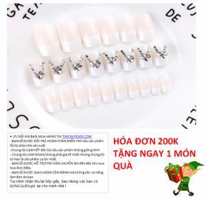 Bộ Móng Tay Giả 24 Móng Nail Noble 12