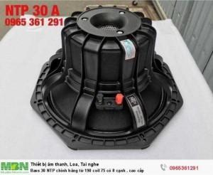 Bass 30 NTP chính hãng từ 190 coil 75 có 8 cạnh . cao cấp