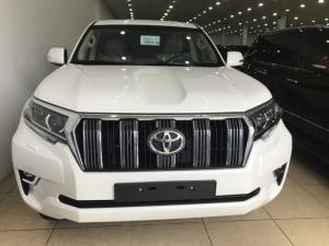 Bán Toyota Land Cruise Prado VX 2019,màu trắng,xe và giấy tờ giao ngay