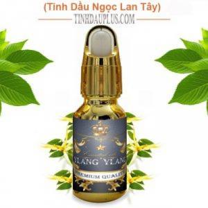 Tinh dầu ngọc lan tây 20ml - Ylang Ylang EO nguyên chất thiên nhiên Ấn Độ - Ngủ ngon, thư giãn