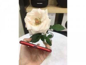 Cần bán iphone 8Plus-64-Red máy trưng bày