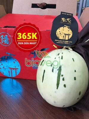 Dưa sữa Nhật Bản - hoa quả nhập khẩu Biovegi