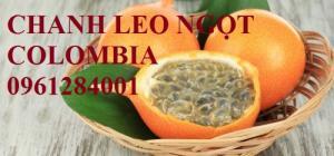 Cung cấp cây giống chanh leo ngọt colombia, chanh leo vàng ngọt, chanh leo ngọt, uy tín, chất lượng