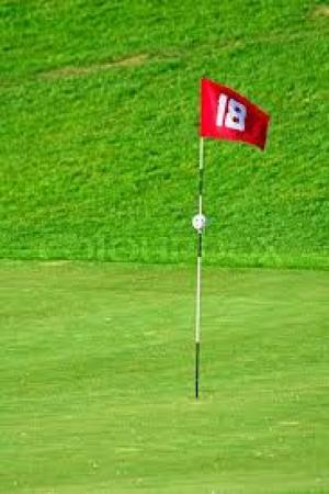 Bộ cờ golf
