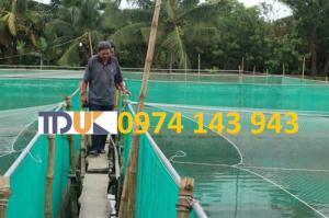 Đại lý phân phối lưới nuôi trồng thủy sản uy tín giá rẻ nhất tại HCM