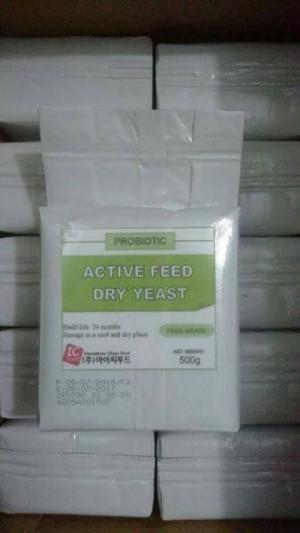 Công ty Kim Ngư phân phối men Probiotic