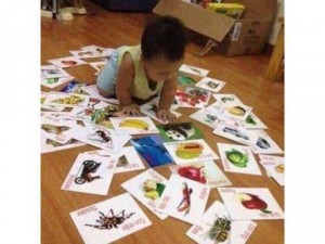 Bộ Thẻ Học 16 chủ đề thông minh cho bé