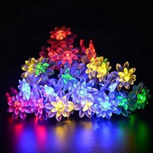 Đèn Led LotusTrang Trí 20 Bóng Năng Lượng Mặt Trời 2m
