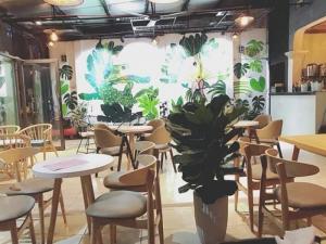 Bàn ghế SOFA cafe giá rẽ