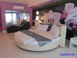 Phòng ngủ cá tính ấn tượng với giường tròn đẹp giá rẻ