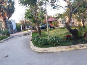 Bán Biệt thự Vườn Mặt tiền Bưng Ông Thoàn phường Phú Hữu, Quận 9 diện tích 4200 MV