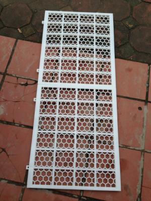 Tấm nhựa dùng trong chăn nuôi vịt, ngan 50*60 giá rẻ