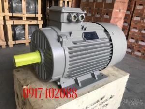 Động cơ motor điện công suất 4HP - 4P