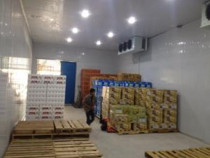 Lắp đặt công trình: Kho lạnh bảo quản trái cây