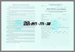 Bán mẫu hợp đồng lao động tiếng Việt