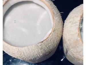 Râu câu trái dừa+ kem chuối nhà làm
