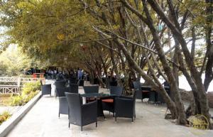 Bàn Ghế Mây Cafe Cao Cấp Tại Sài Gòn