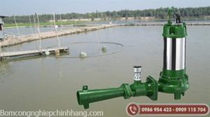 Một số loại máy sục khí chìm và ứng dụng của chúng