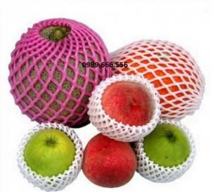 Bao bì Bảo quản trái cây xuất khẩu
