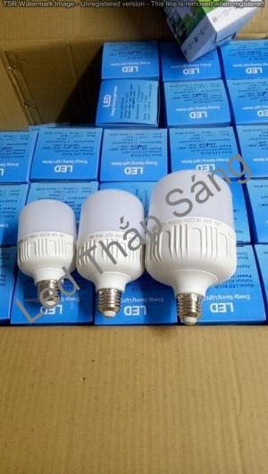Chuyên cung cấp đèn Led trụ, nhận gia công thương hiệu theo yêu cầu của khách hàng