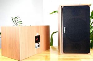 Loa Arirang Jant VIII bass 25cm, 480W, khuyến mãi giảm giá 10%