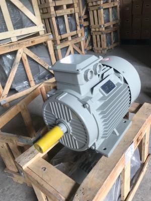 Động cơ motor điện 3 pha/1 pha