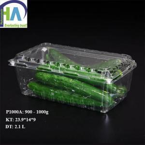 Chuyên bán buôn và bán lẻ Hộp nhựa đựng dưa chuột P1000A